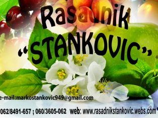"""Vocne sadnice """"""""Rasadnik Stankovic"""""""