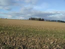 Prodajem zemlju na Fruškoj gori