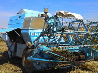 Braud 502