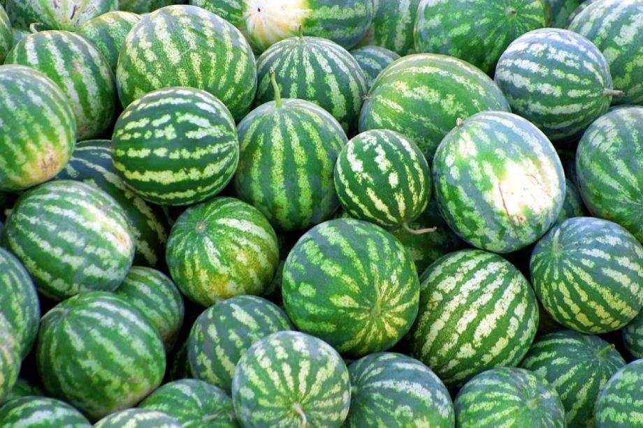 Zrele lubenice