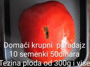 Domaće seme paradajza