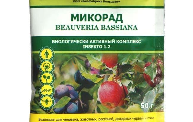 Biološka zaštita od štetočina Beauveria bassiana